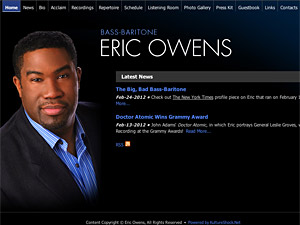 Custom website design for Eric Owens
